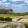 Leeuwin Estate vineyards vintage 2015